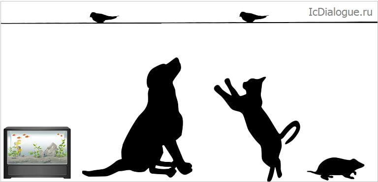 сочинение на английском про животных